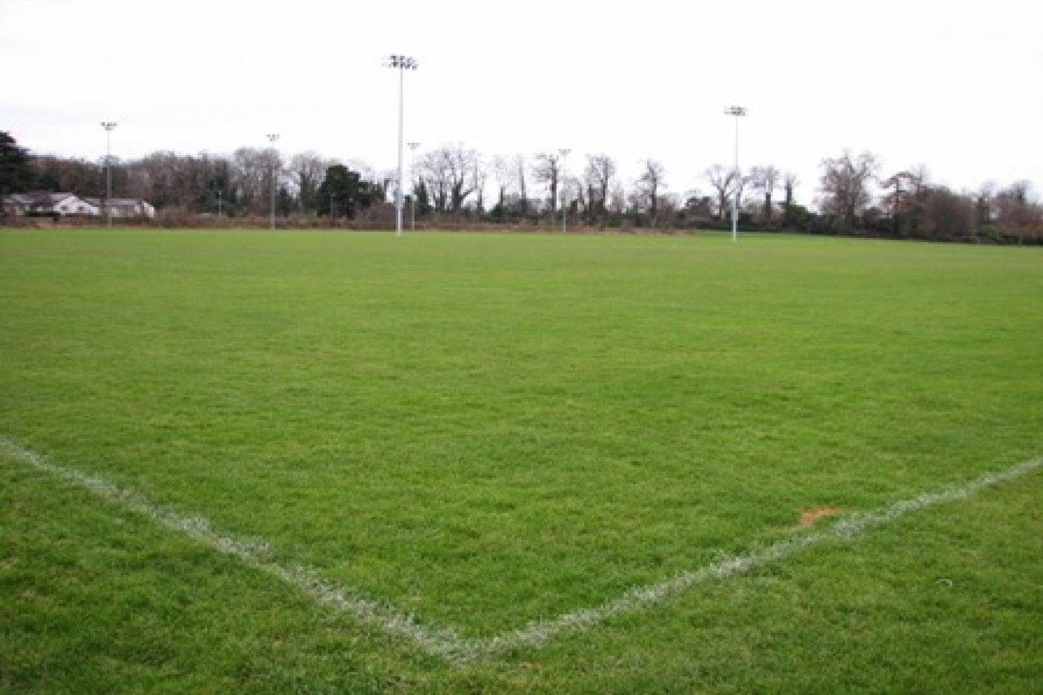 University College Dublin Union | Grass rugby pitch
