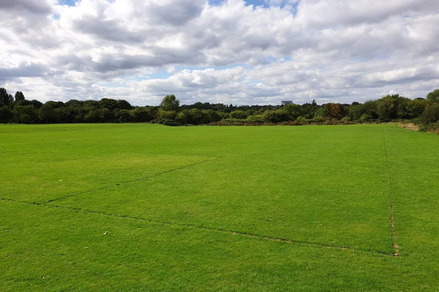 Muswell Hill Playing Fields 11 a side | Grass football pitch