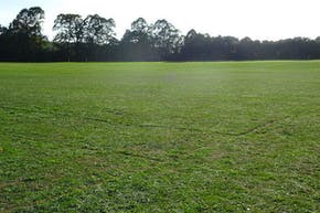 Wilmington Grammar School for Boys | Grass Football Pitch