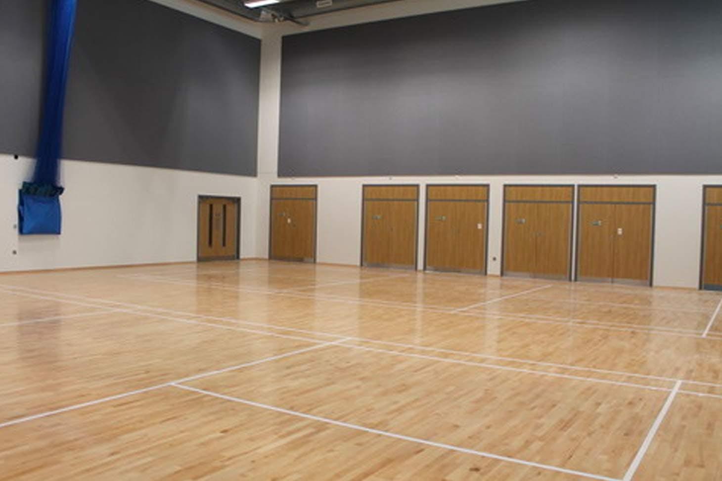 Oaklands School Indoor badminton court
