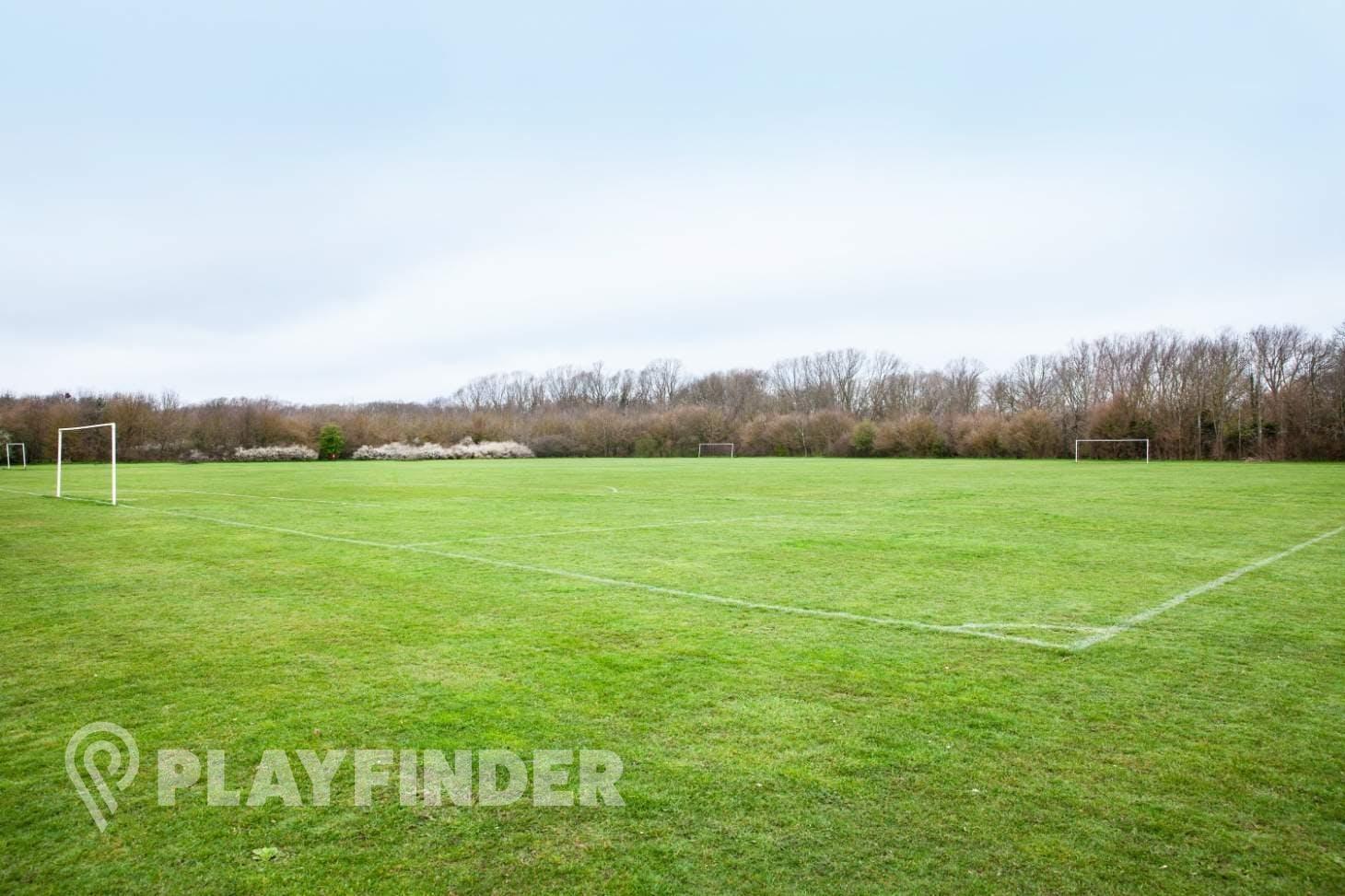 Hillgrounds 7 a side | Grass football pitch