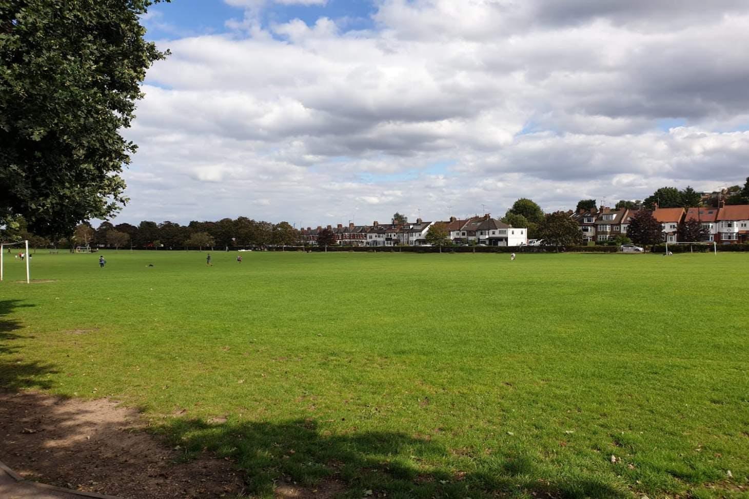 Albert Road Recreation Ground 9 a side   Grass football pitch