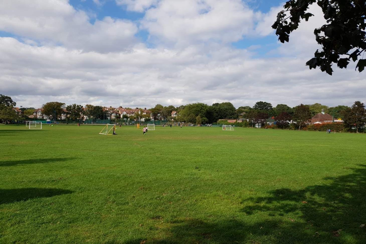 Albert Road Recreation Ground 7 a side | Grass football pitch