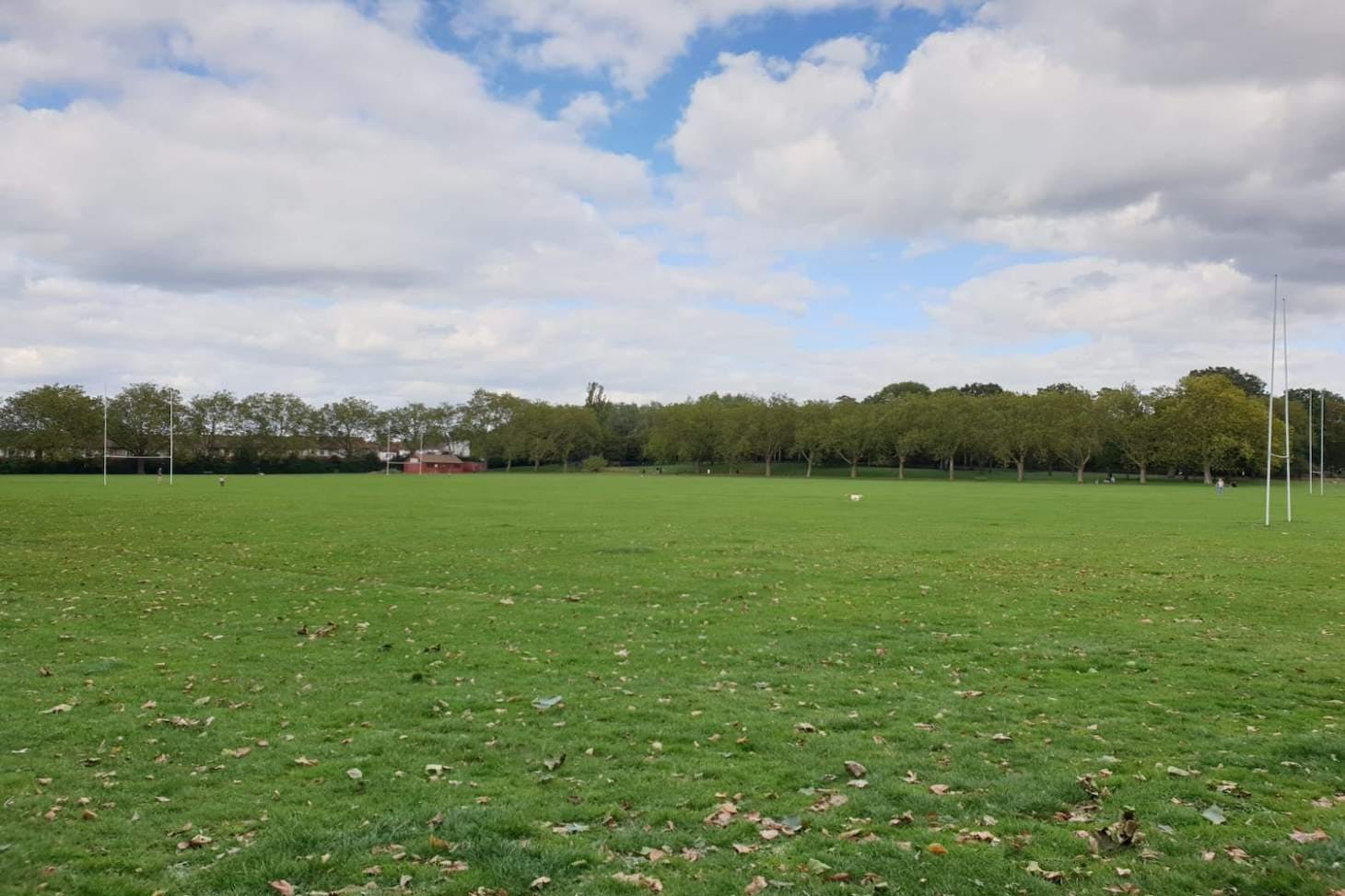 Downhills Park Union | Grass rugby pitch