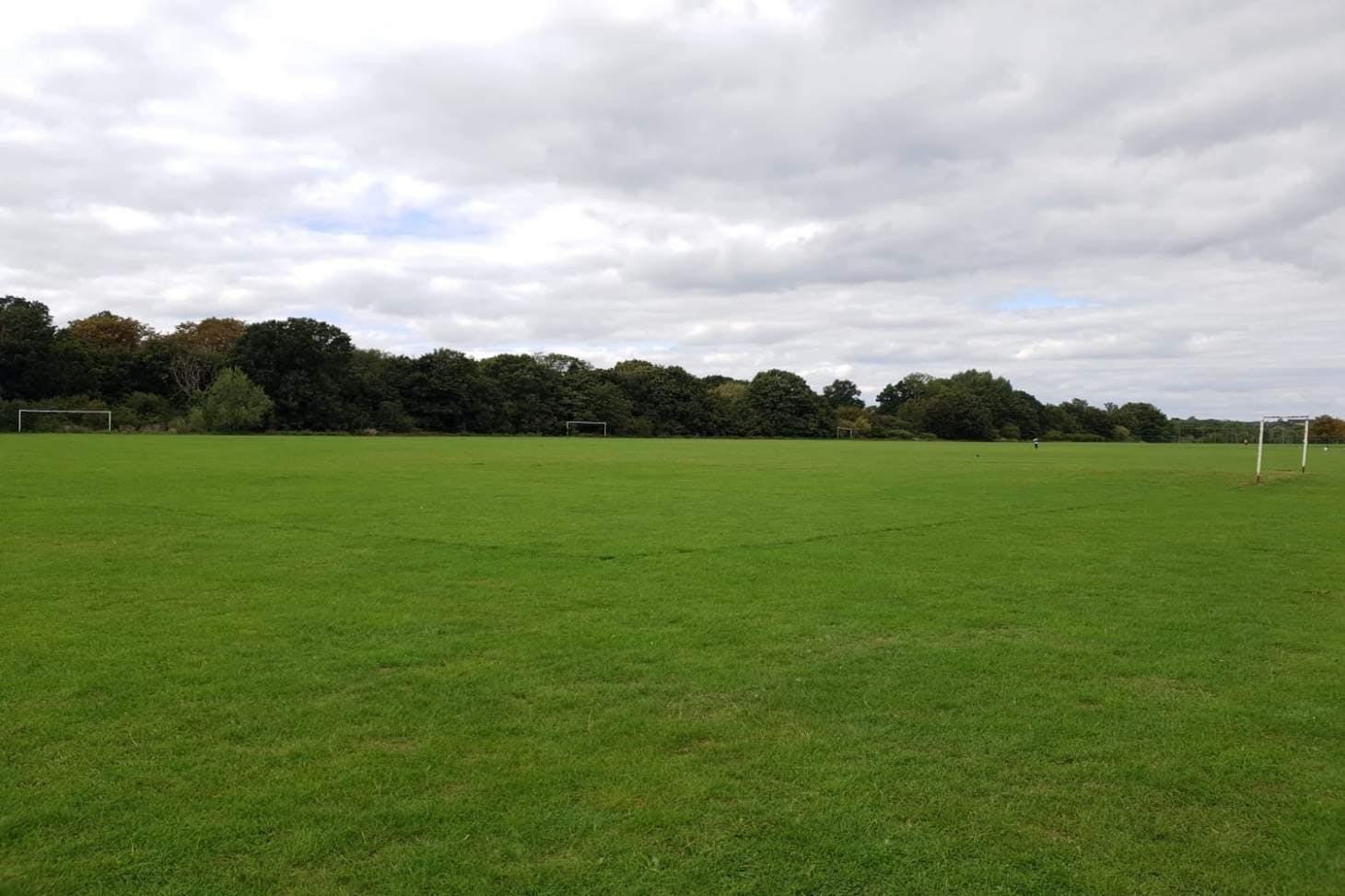 Muswell Hill Playing Fields 11 a side junior | Grass football pitch