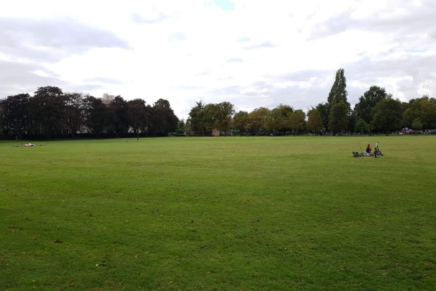Markfield Park 11 a side junior | Grass football pitch