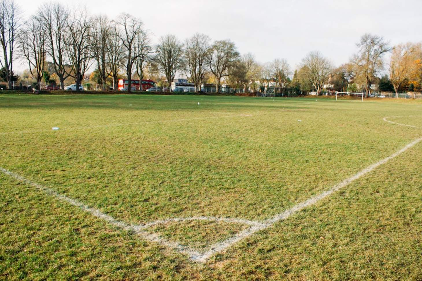 Chiswick School 11 a side | Grass football pitch