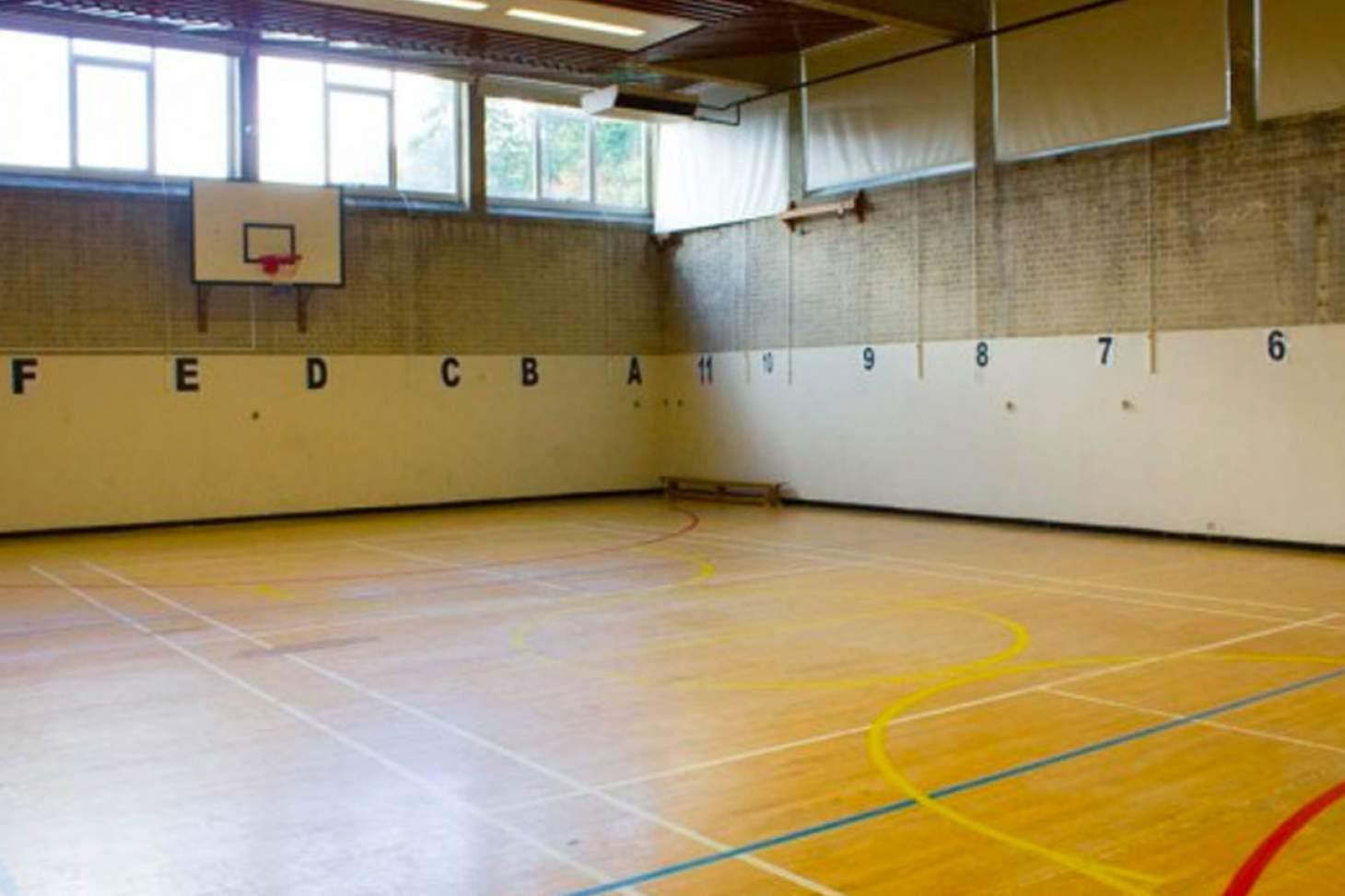 Harris Academy Battersea Court   Gymnasium badminton court