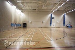 Ark Elvin Academy | Sports hall Netball Court