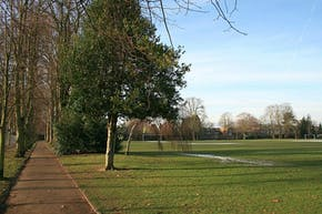 Alexandra Recreation Ground | Grass Football Pitch