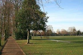 Alexandra Recreation Ground | Grass Cricket Facilities