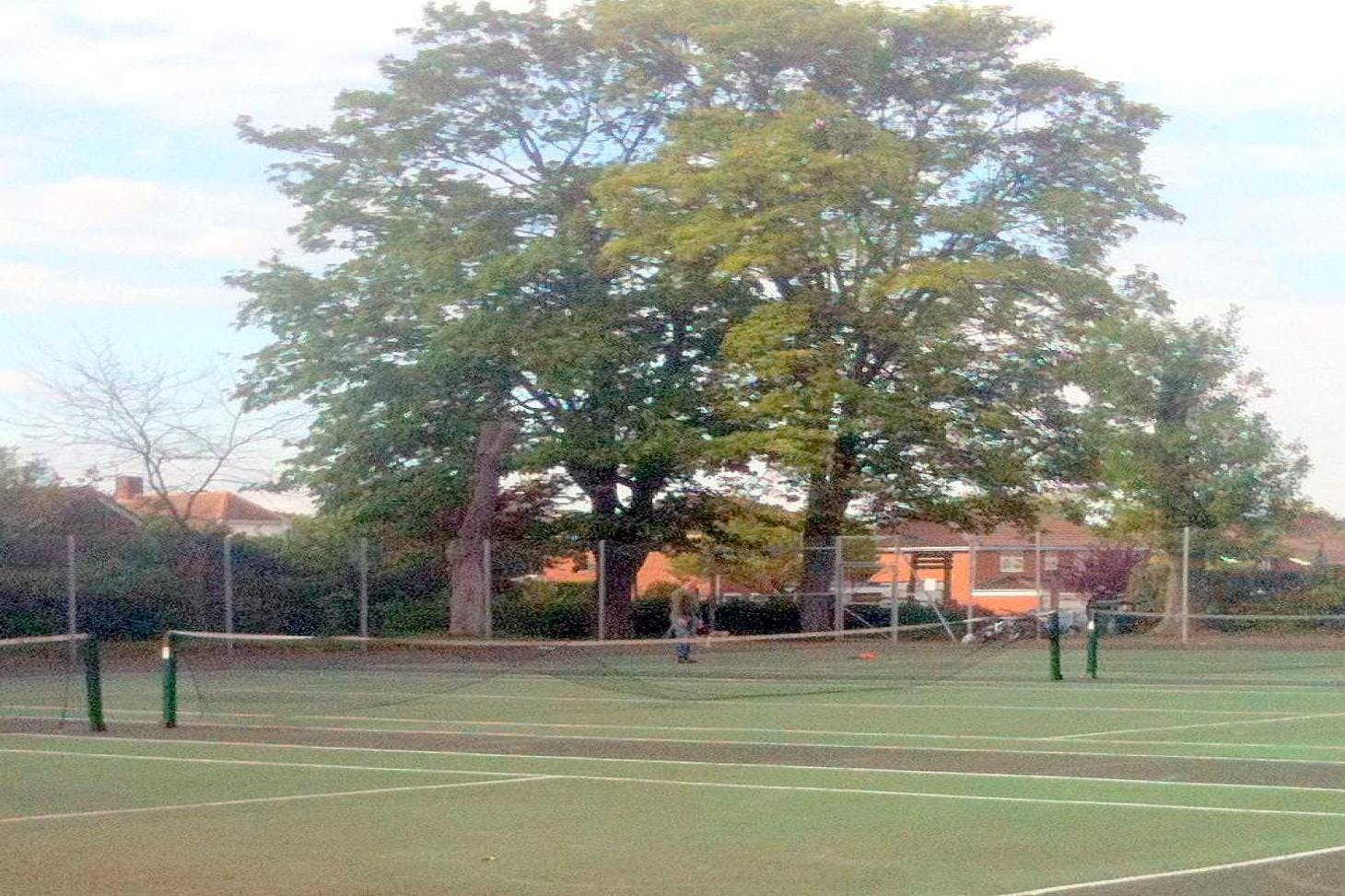 Alexandra Recreation Ground Outdoor | Hard (macadam) tennis court