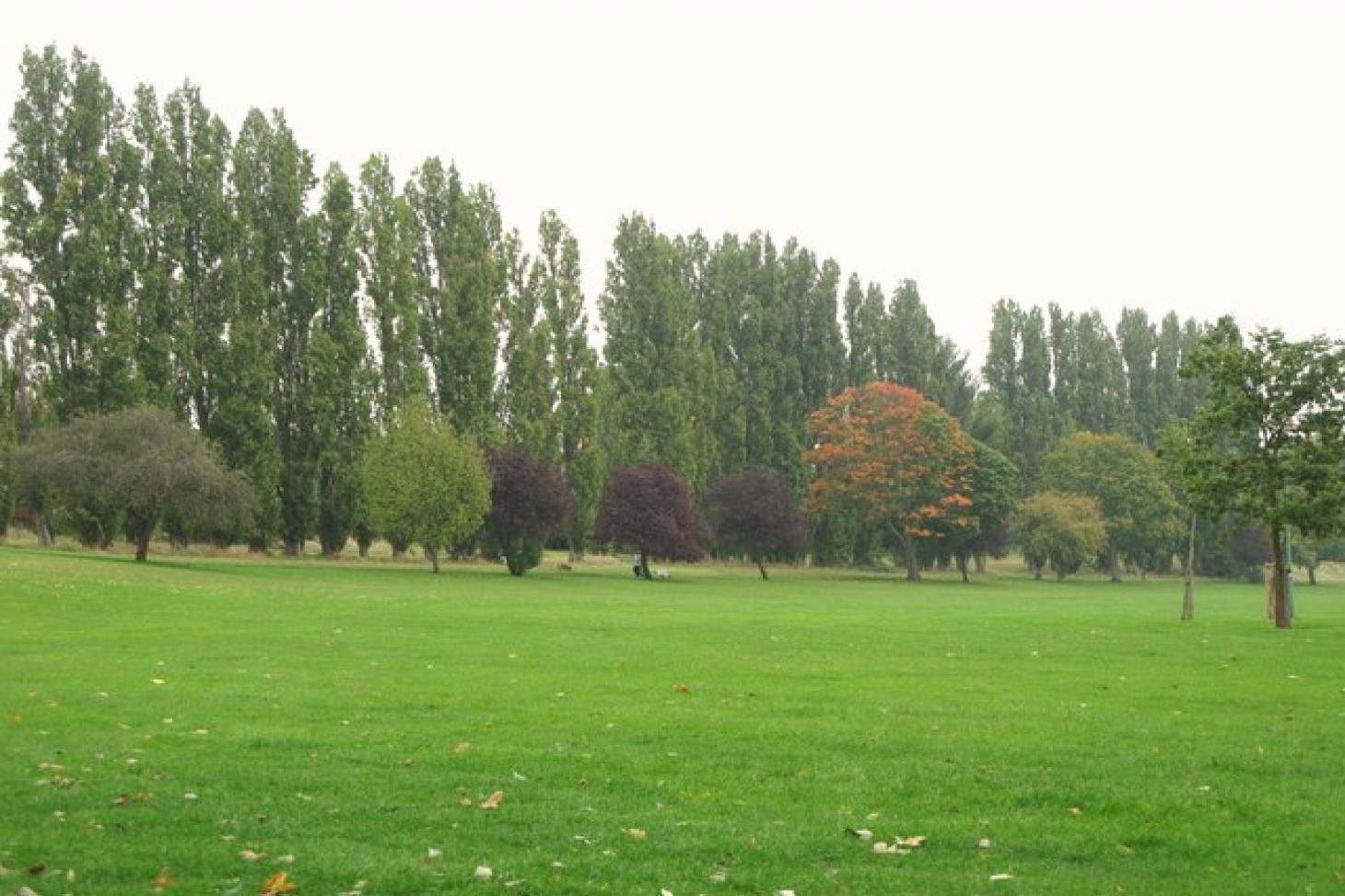 Chinbrook Meadows Full size | Grass cricket facilities