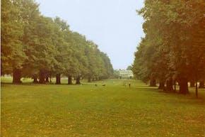 Broomfield Park | Hard (macadam) Netball Court