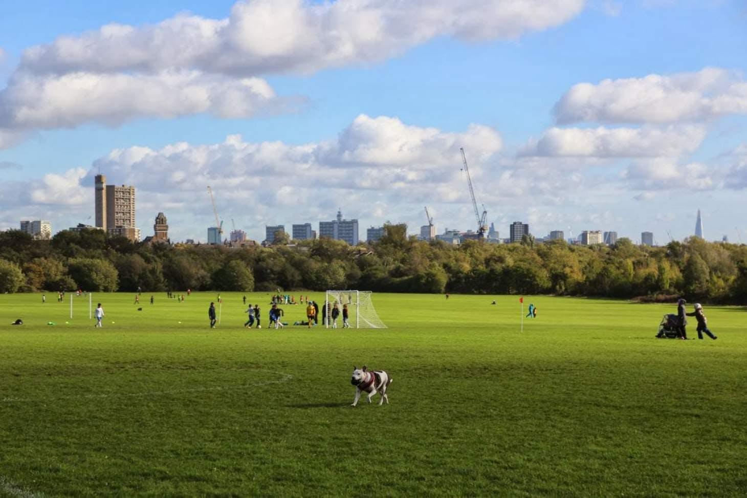Wormwood Scrubs Full size | Grass cricket facilities