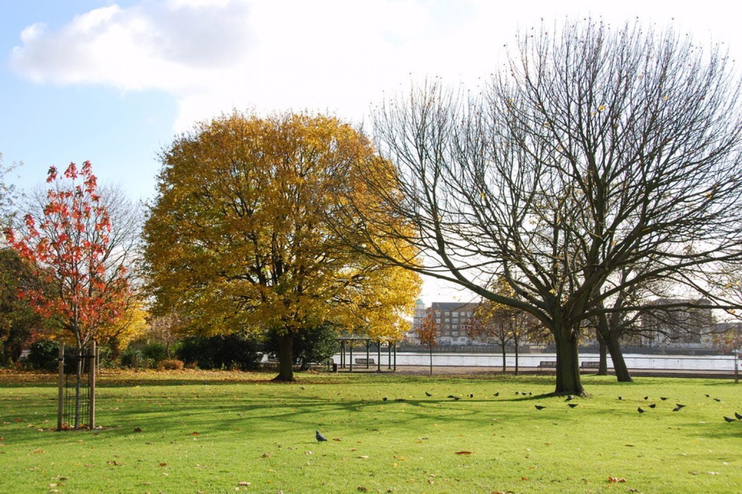 King Edward VII Park Outdoor | Hard (macadam) tennis court