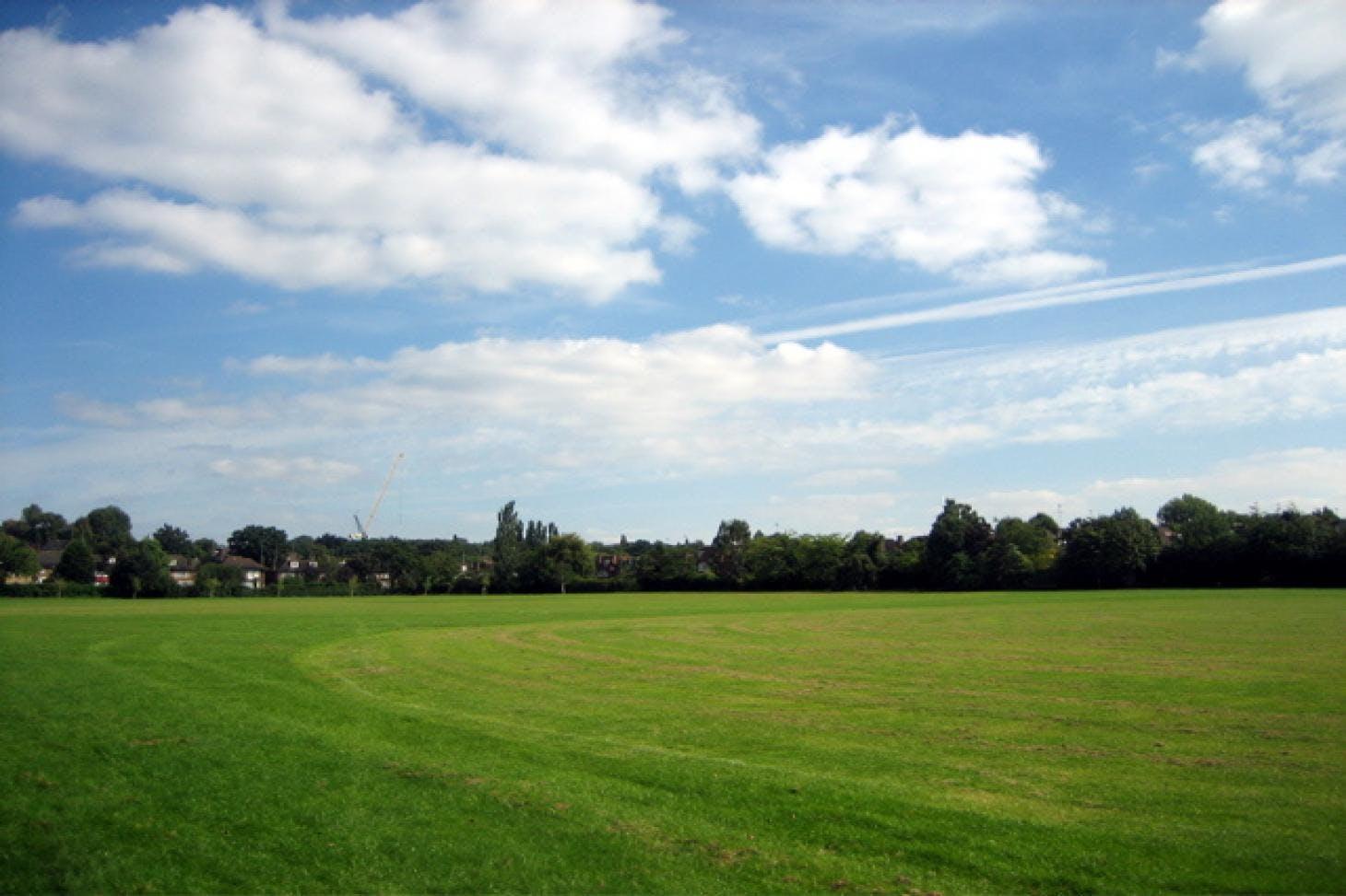 Lyttelton Playing Fields Full size | Grass cricket facilities
