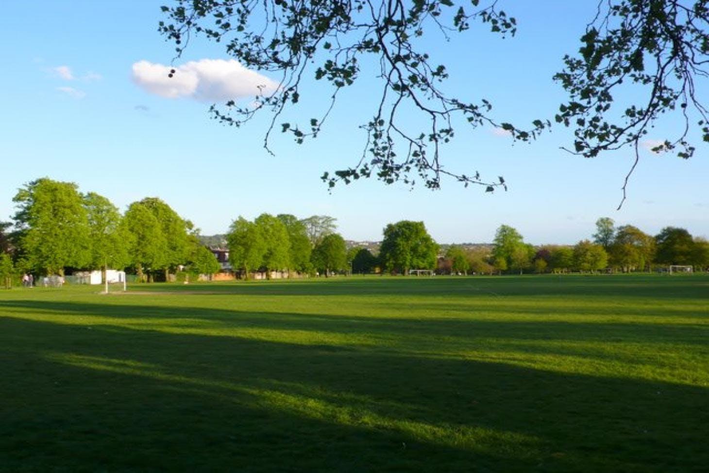 Hendon Park 5 a side | Grass football pitch