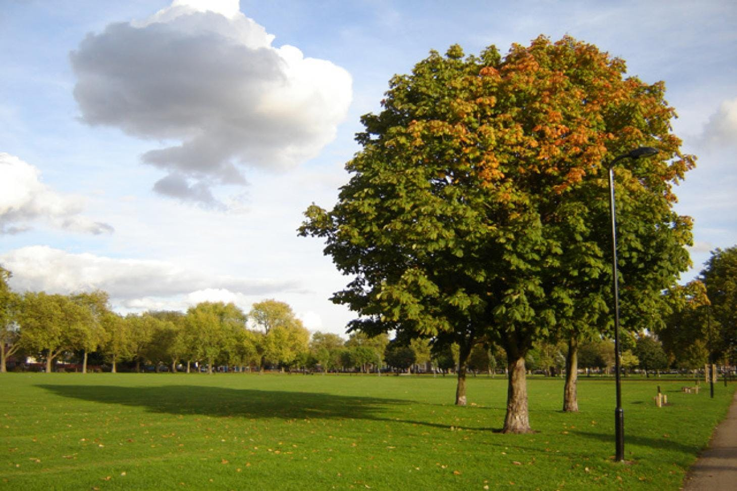 Hackney Downs Park Full size | Artificial cricket facilities