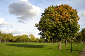 Hackney Downs Park | Artificial Cricket Facilities