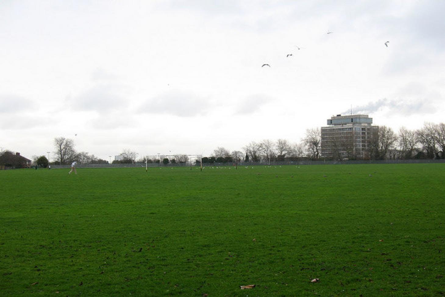 Hornfair Park 11 a side   Grass football pitch