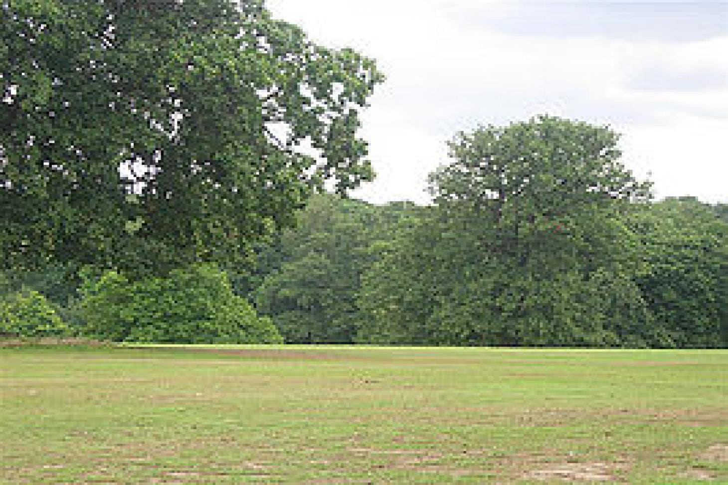 Grovelands Park Outdoor | Hard (macadam) tennis court