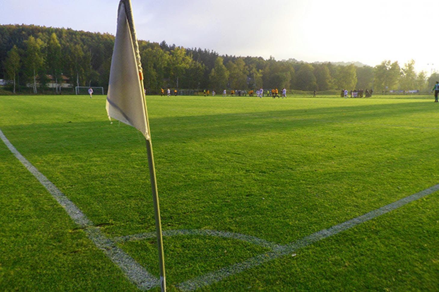 Gurnell Leisure Centre 11 a side | Grass football pitch