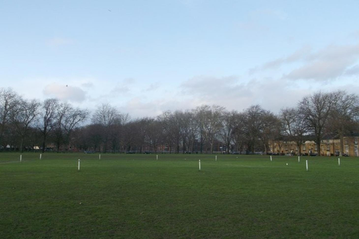 Millfields Park Full size | Grass cricket facilities