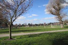 Dundonald Recreation Ground | Grass Cricket Facilities