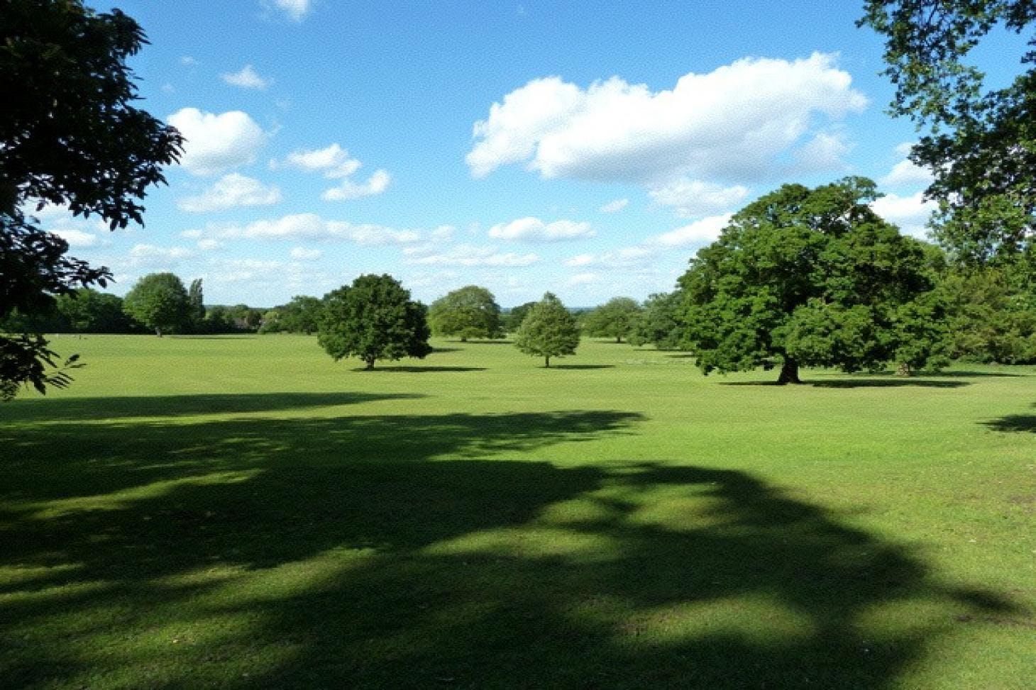Hillingdon Court Park - Football 5 a side   Grass football pitch