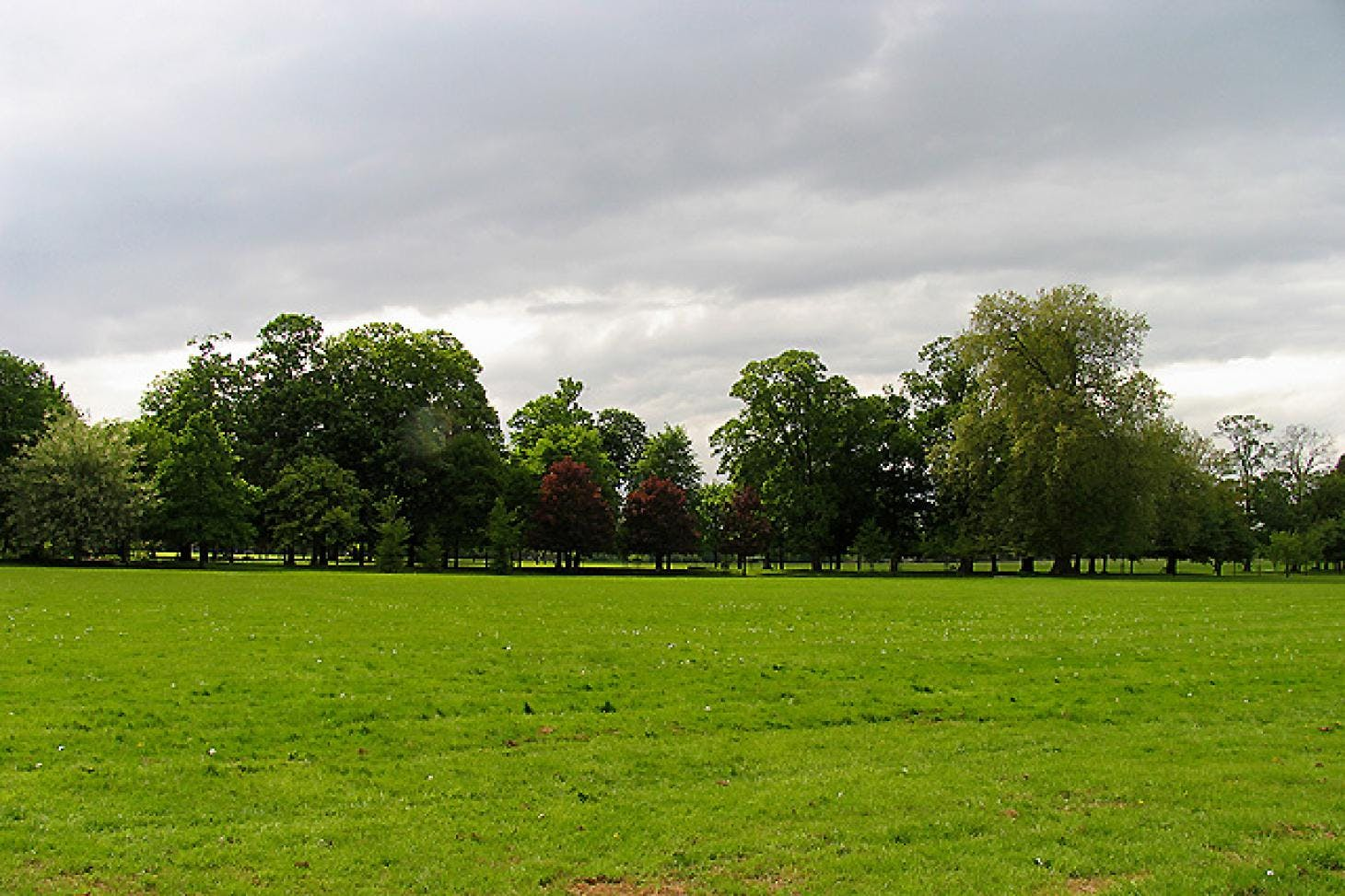 Gunnersbury Park Union rugby pitch