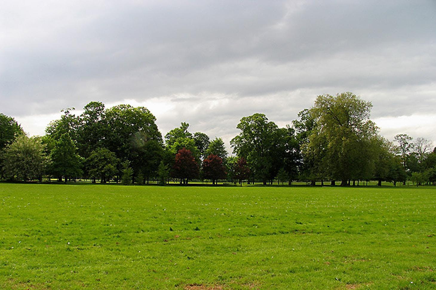 Gunnersbury Park 11 a side | Grass football pitch