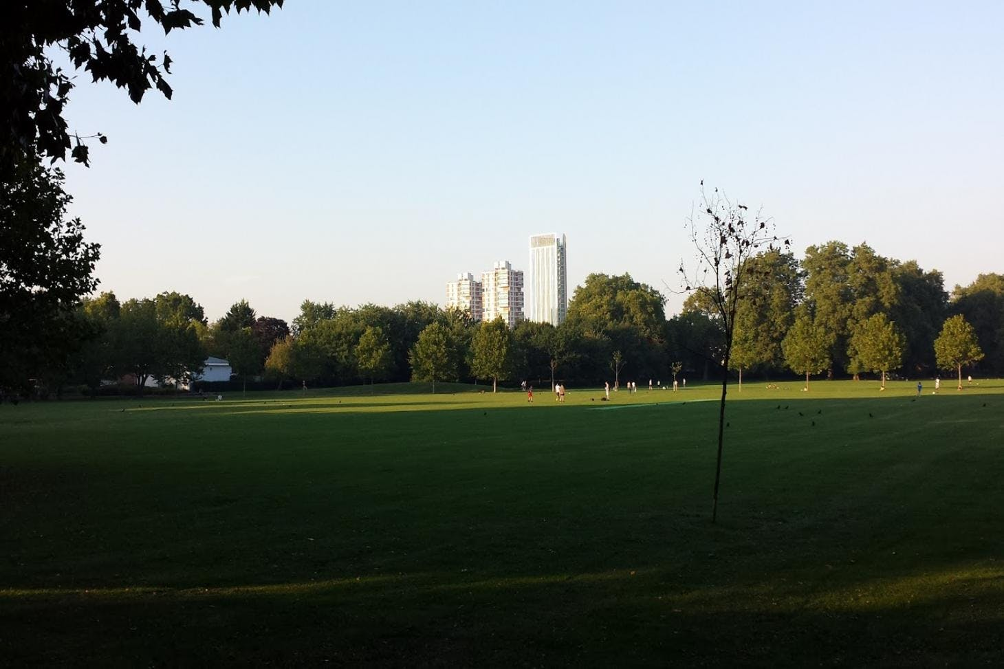 Southwark Park 11 a side | Grass football pitch