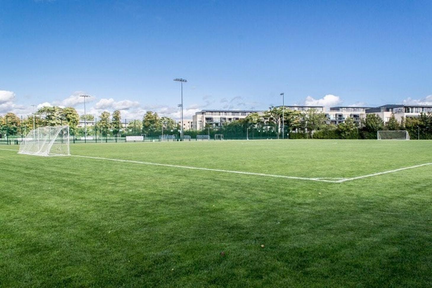 Alexandra College 11 a side | Grass football pitch