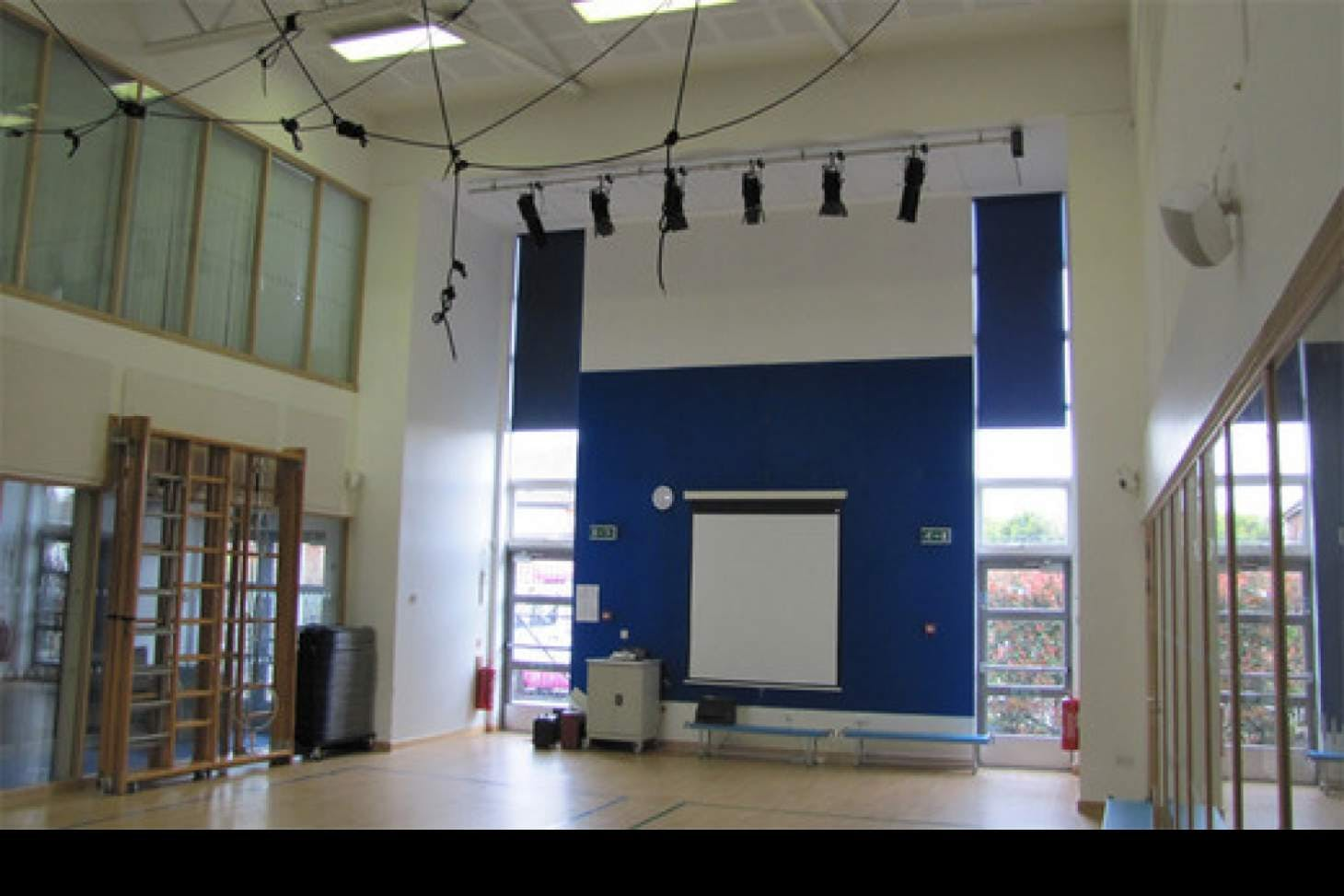Wilbury Primary School Indoor netball court