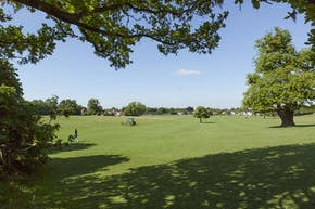 Lloyd Park | Grass Football Pitch