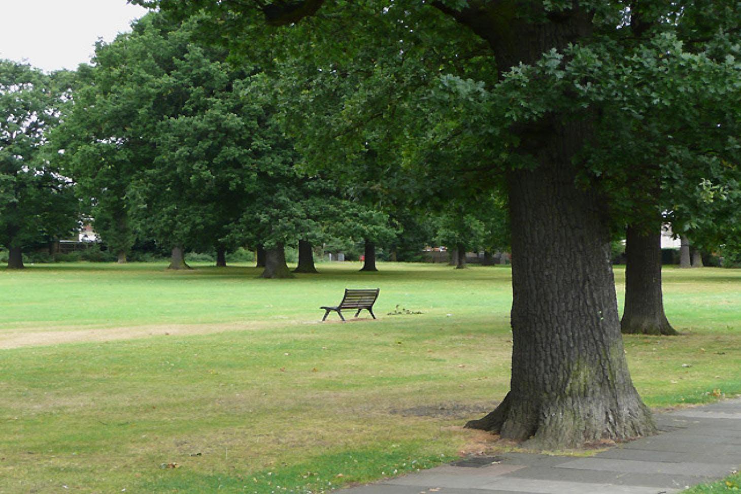 Longlands Recreation Ground 11 a side | Grass football pitch