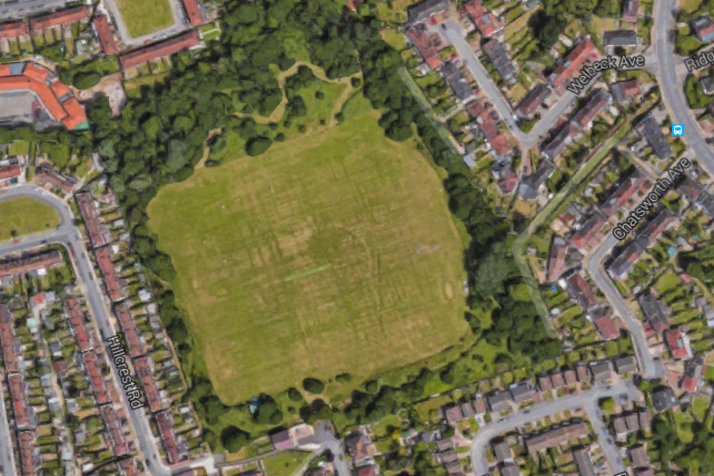 Westminster Fields Outdoor | Grass athletics track