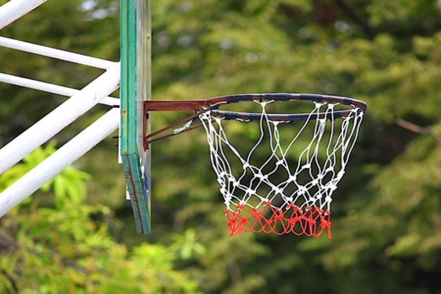 Geraldine Mary Harmsworth Sports Facility Outdoor | Hard (macadam) netball court