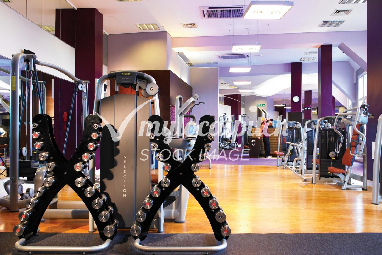 West Wood Health Club, Leopardstown Indoor gym