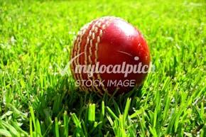 Caddington Sports and Social Club | Grass Cricket Facilities