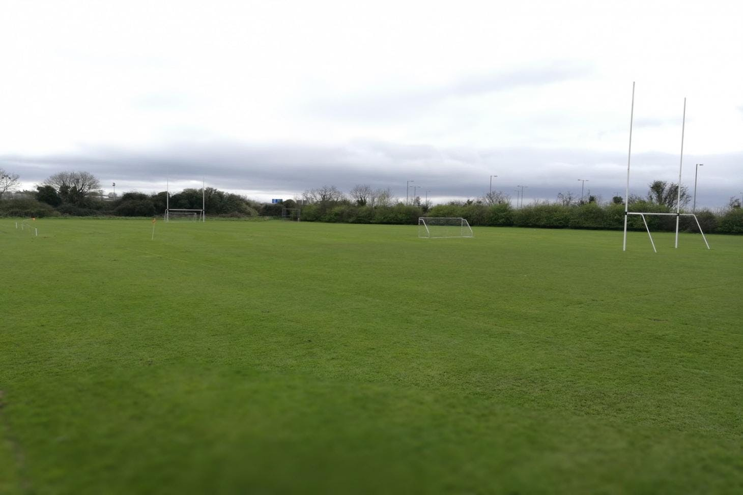 Royal College of Surgeons Sports Grounds 7 a side | Grass football pitch