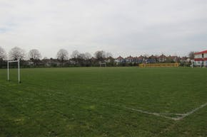 Wilbury Primary School | Grass Football Pitch