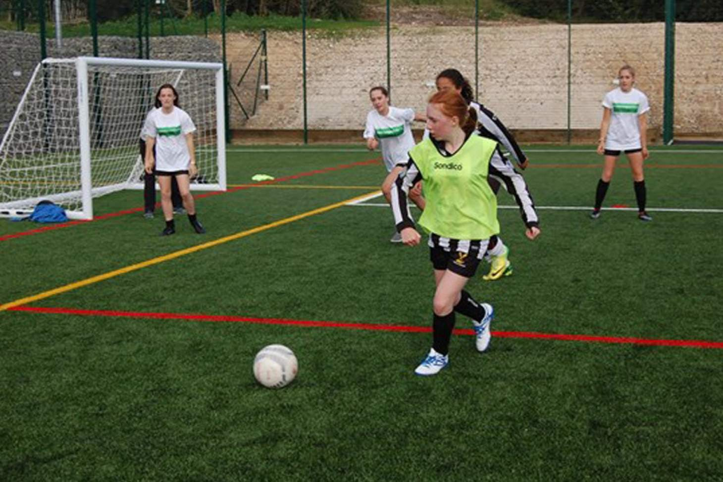 Dorothy Stringer School 11 a side | 3G Astroturf football pitch