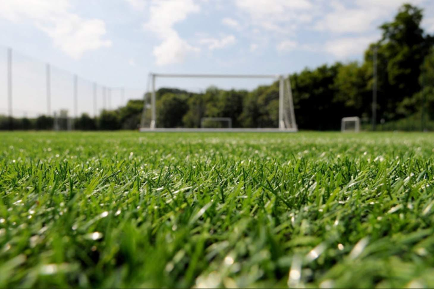 Falmer Sports Complex 11 a side | Grass football pitch
