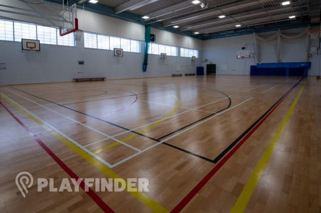 Harris Academy St Johns Wood's Volleyball Court